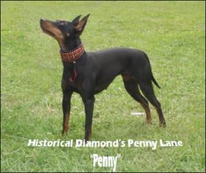 penny-lane-1