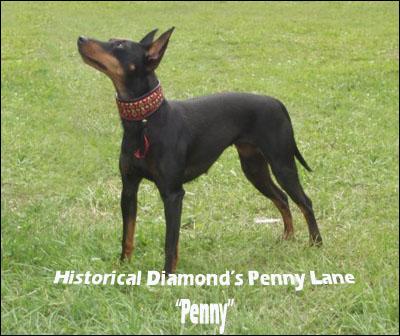 penny-lane-1.jpg