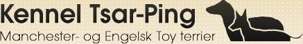 tsar-ping-logo.png